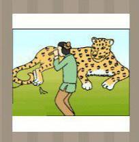 看图猜成语:豹子和人答案